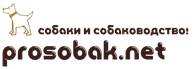 Prosobak.net