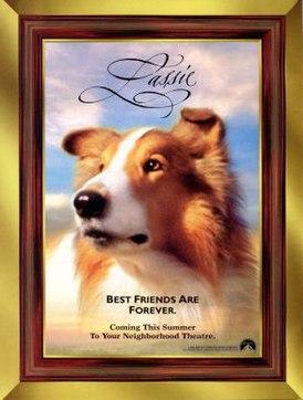 Картинки по запросу Лесси \ Lassie (1994)