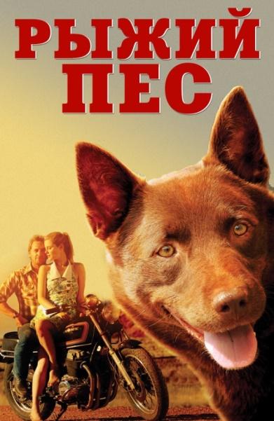 Картинки по запросу фильм Рыжий пес